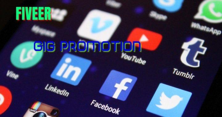 Fiverr Gig Promotion